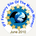 IFF Falconry Site of the Month - June 2010